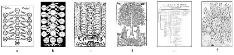 History of mind mapping as a compilation of six Porphyrian and derivated trees